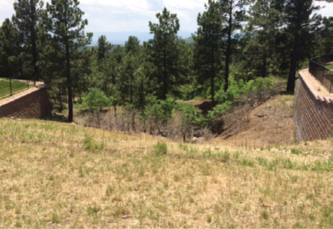Above: The weeds and brush run up to the retaining walls of homes in this Colorado neighborhood before being treated by the goats. Below: Once the herd of goats finished with the same area, fire safe spaces that are defensible appeared.