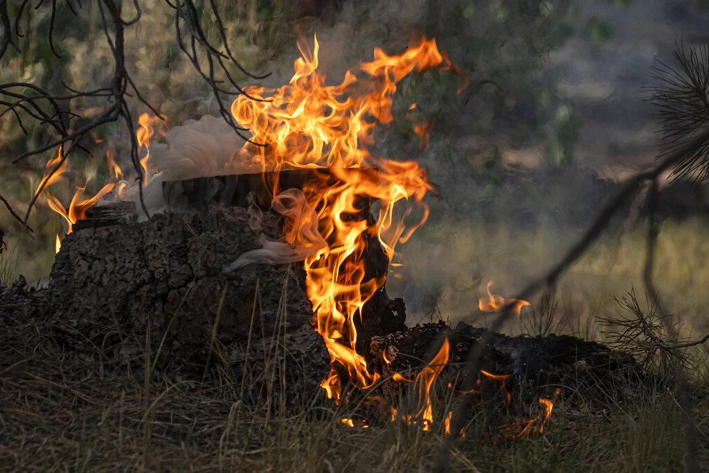 Bootleg fire spot fires
